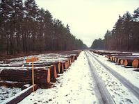 Ressourcenmanagement oder Holzeinkauf?