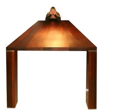 Thermoholz aus heimischer Buche für schöne Möbel und Küchen