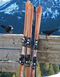 Skitest1_jan08_052bergdohlen