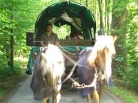 Miele08werksfahrtplanwagen05