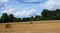 Steinensittenbach: der Walchanger, der Hirtenanger