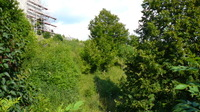 Kurzbesuch beim Burganger Hohenstein
