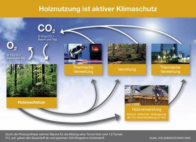 Bild_Grafiken_001_Holznutzung_ist_aktiver_Klimaschu