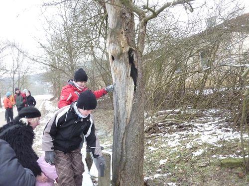 Winterwanderung2011Fuchsau_016