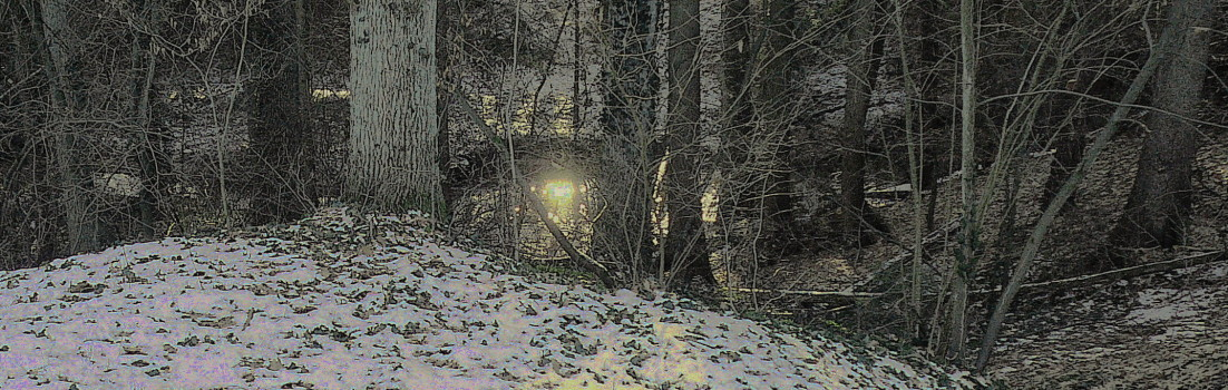 "Winterspaziergang im Hutanger ""Laufer Hardt"""