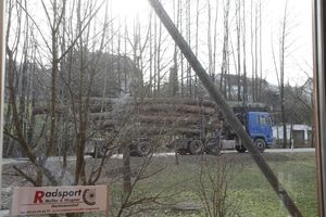 Holzlieferung_0003