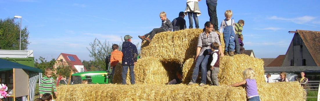 Tag der Regionen 2011 in Rummelsberg am Sonntag