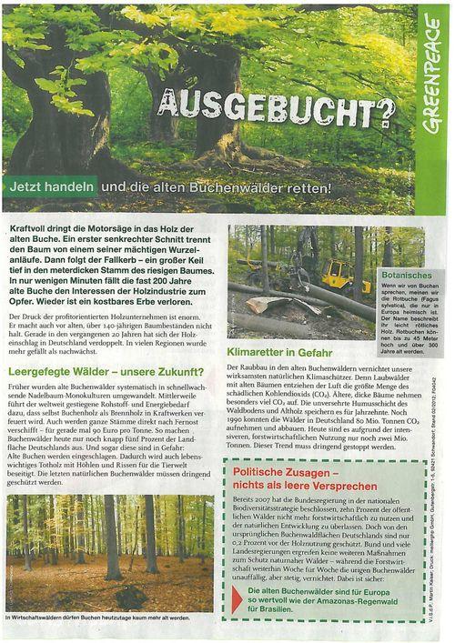 BuchenS1web