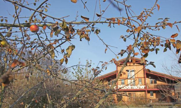 Apfelrezepte für den Tag der Küche aus Massivholz 2012 bei den Möbelmachern