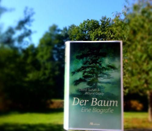 BuchDerBaumOekomSuzuki11 Kopie