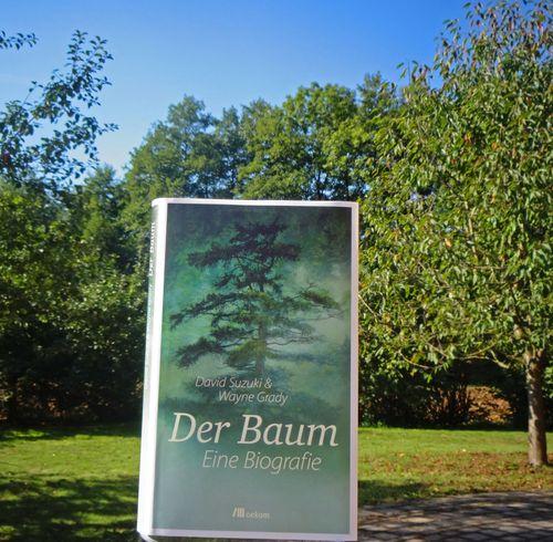 BuchDerBaumOekomSuzuki09Ausschnitt