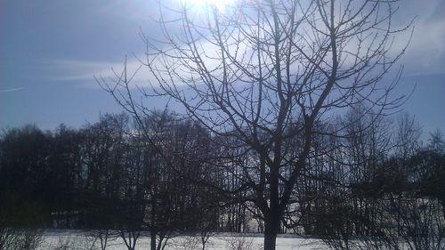 2013-03-02 12.33.04
