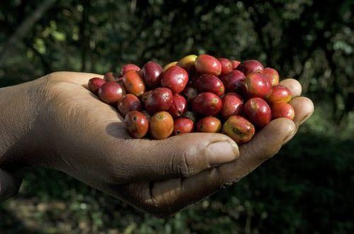 Äthiopien – Land der Sinne und des Kaffees