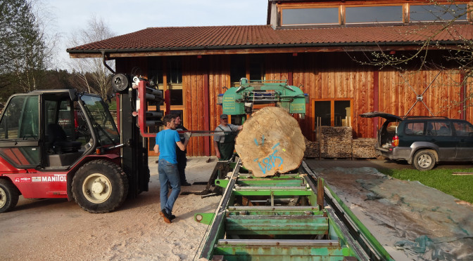 Die regionale Waldschöpfungskette: Das Sägen