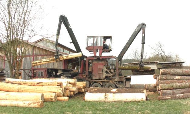 Was unsere Kunden von der regionalen Waldschöpfungskette und dem Holz aus der Region haben